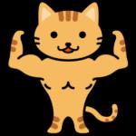 寒いと猫も筋肉が硬くなります