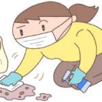 猫ちゃんの嘔吐や粗相の処理を安全に行う方法
