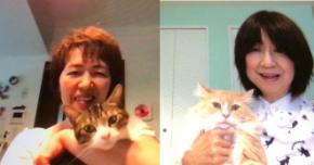 【お客様の声】猫ちゃんのごはん、けちってました!