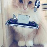FMラジオの収録に行ってきます!