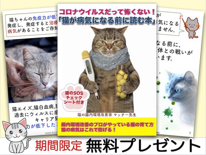 猫 猫のお悩み コロナウイルス 猫の病気 猫の腸内環境改善 猫のSOS