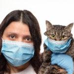 ここまでやる?!獣医師会から発表された感染防止策