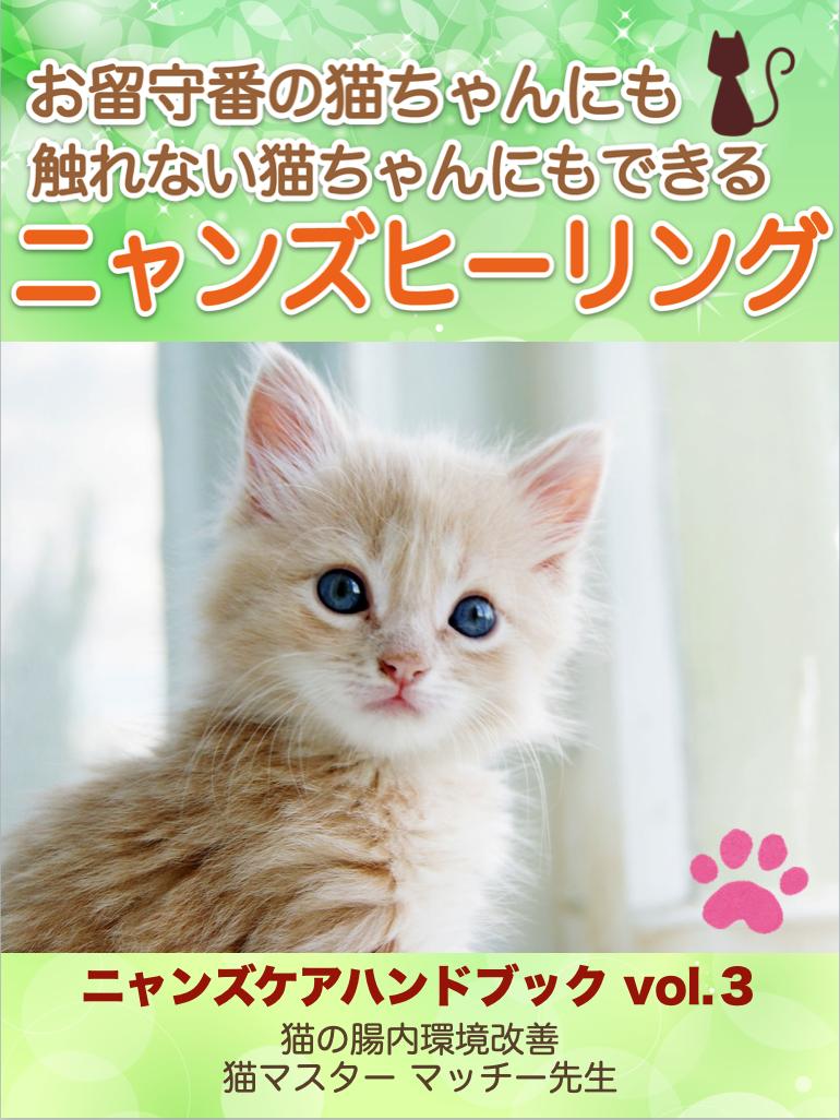 ニャンズヒーリング 猫 ネコ ペットケア ヒーリング ニャンズケア